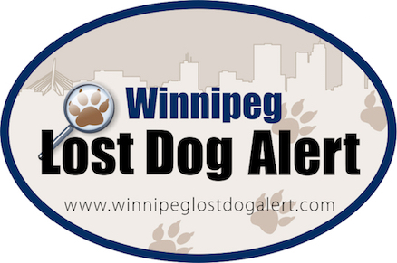 Information on lost dogs in the Winnipeg and surrounding area